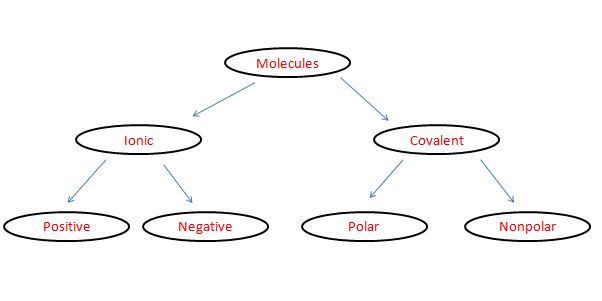 Using The Following Terms Make A Network Tree Concept Map Of Chemical Bonding Ionic Covalent Ions Positive Ions Negative Ions Molecules Polar And Nonpolar Homework Help And Answers Slader